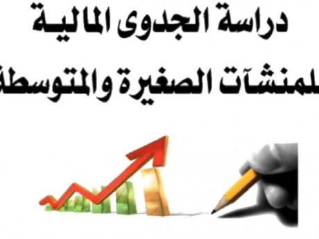دراسات الجدوي المالية