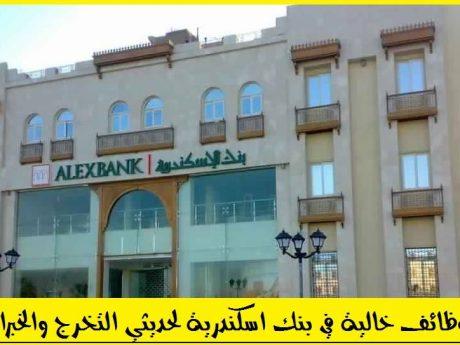 التقديم في بنك اسكندرية